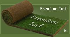 Premium Turf